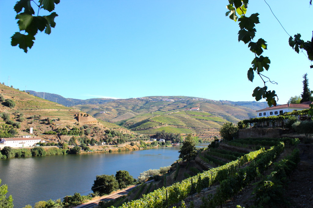 Douro Valley, Portugal | Wander & Wine
