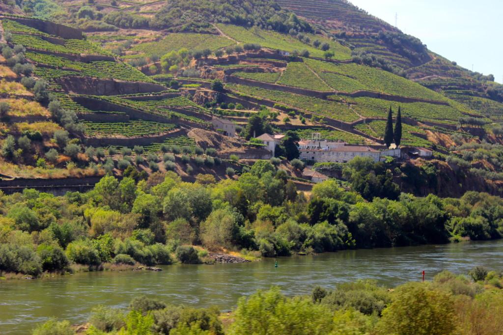 Portugal   Wander & Wine