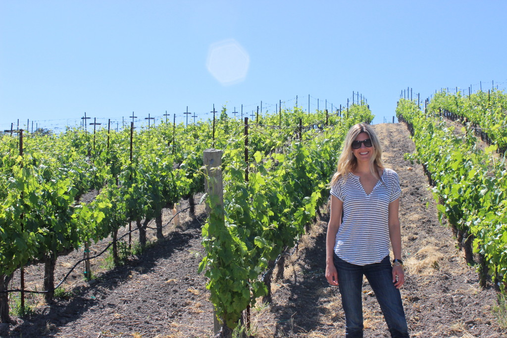 Paso Robles Vines | Wander & Wine