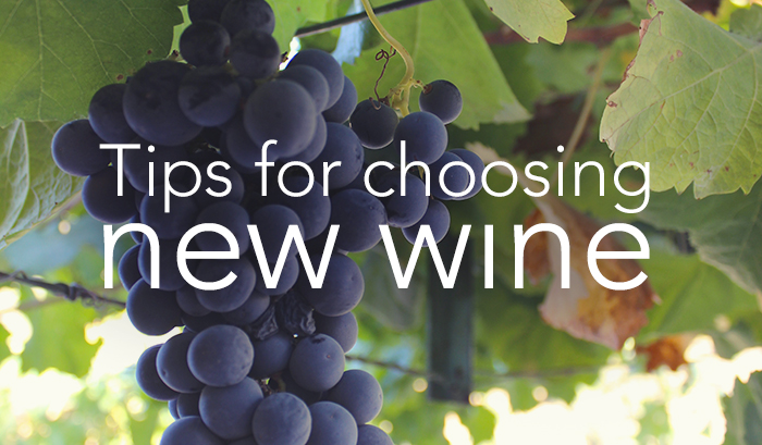 Tips for Choosing New Wines | Wander & Wine