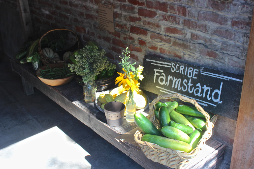 Scribe Winery Farmstand - help yourself | Wander & Wine