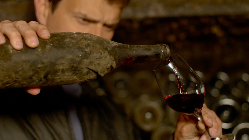 Movie Preview - Somm: Into the Bottle #winemovie #somm2 | Wander & Wine