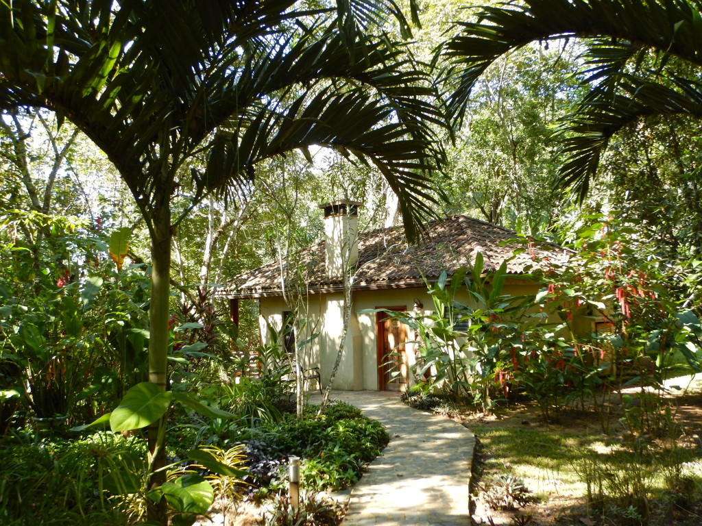 Mystic River Resort, Belize | Wander & Wine