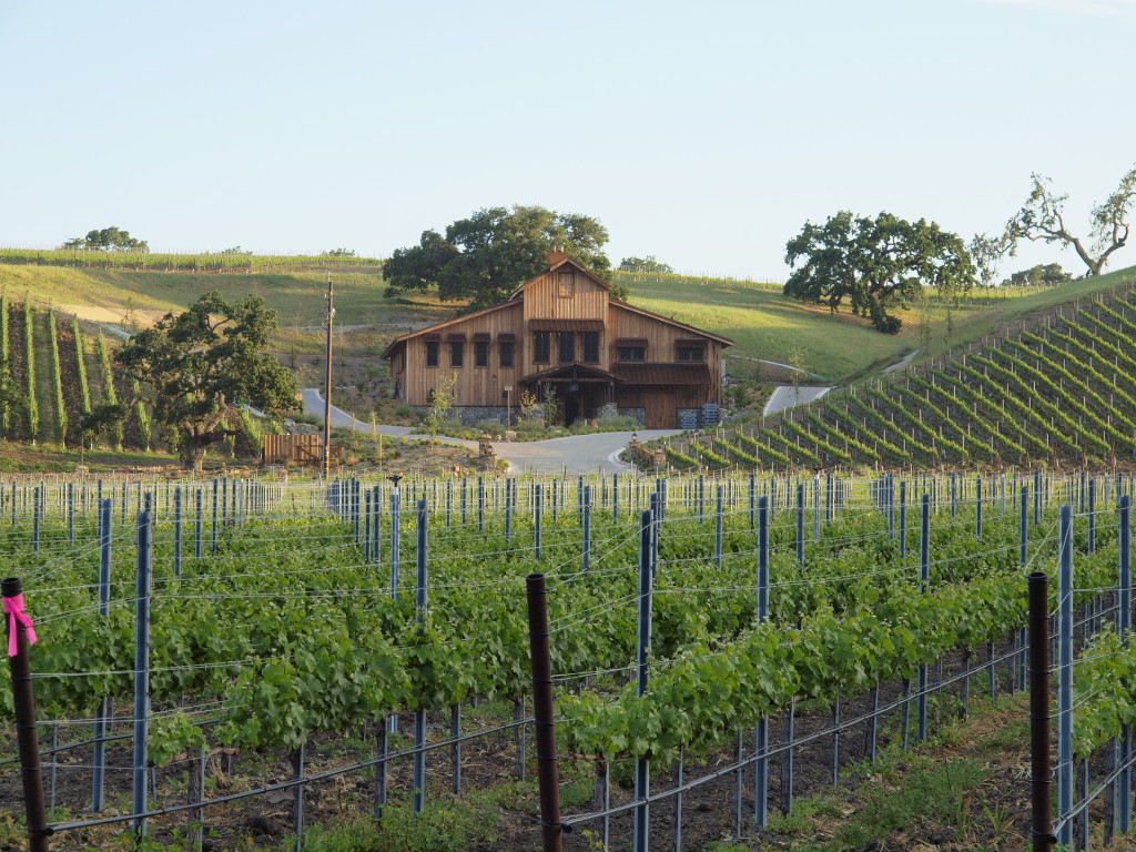 Grassini Family Vineyards' Equipo Wine | Wander & Wine