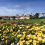Yesterdays visit to the Mission Rose Gardens Our town neverhellip