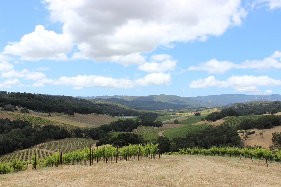 Halter Ranch Winery, Paso Robles | Wander & Wine