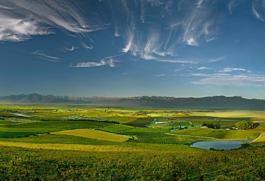 South African Wine Country | Wander & Wine