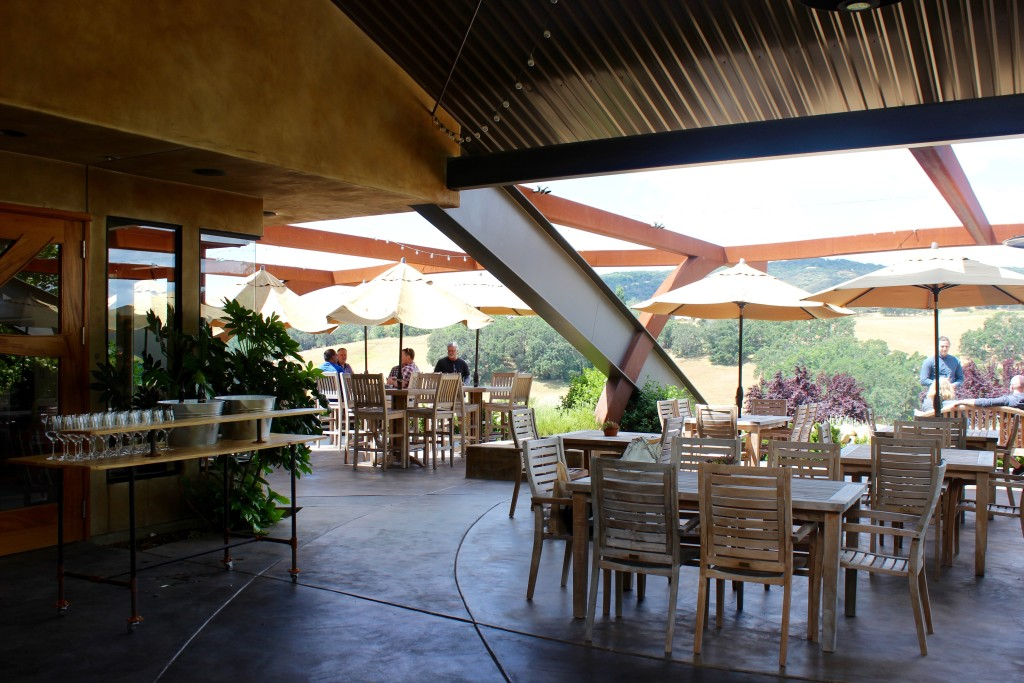 Denner Vineyards 2