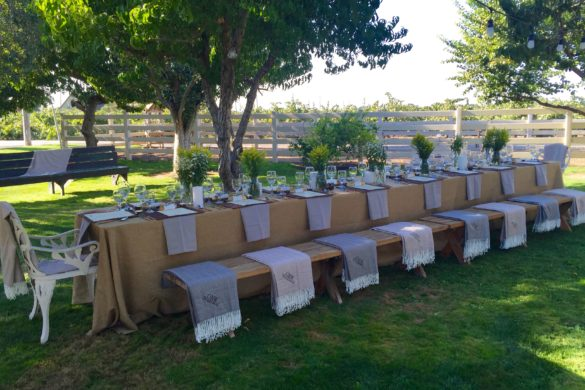 Oak Ridge Winery Vineyard Tour & Wine Pairing Dinner, Lodi | Wander & Wine