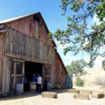 Gainey Vineyards Jeep Tour & Barn Tasting, Santa Ynez | Wander & Wine