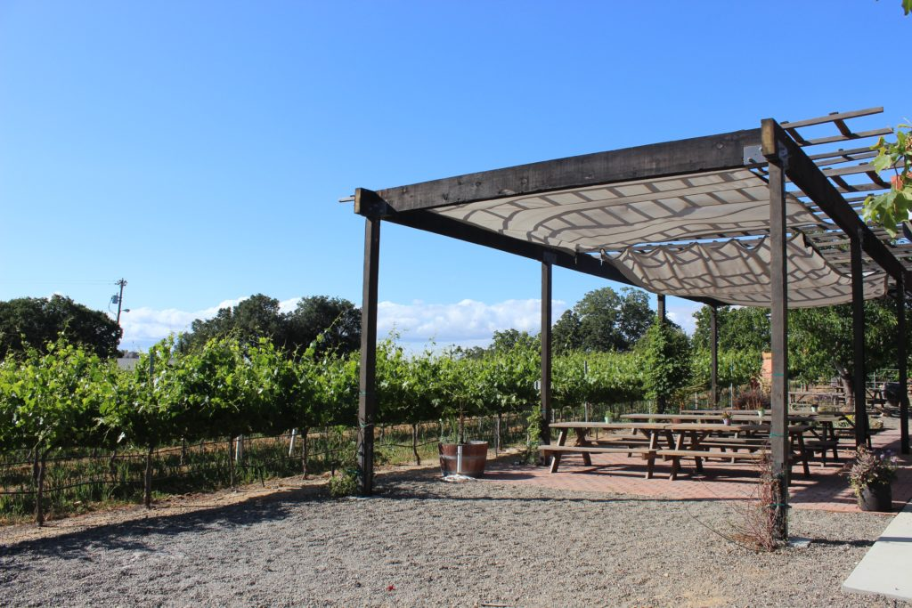 Ultimate Guide to Paso Robles Wineries | Wander & Wine