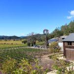 Davis Estates, Calistoga | Wander & Wine