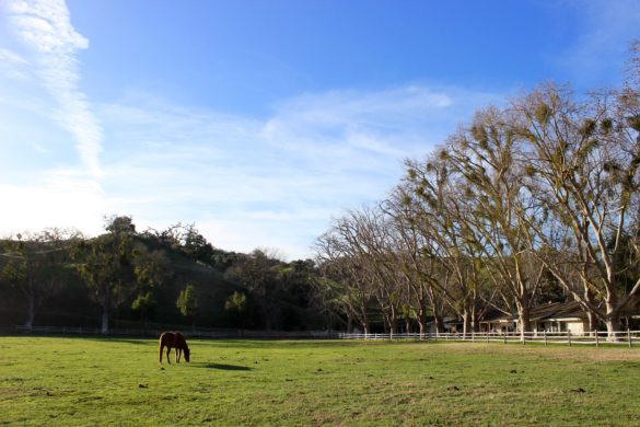 The Alisal Ranch, Santa Ynez Valley | Wander & Wine