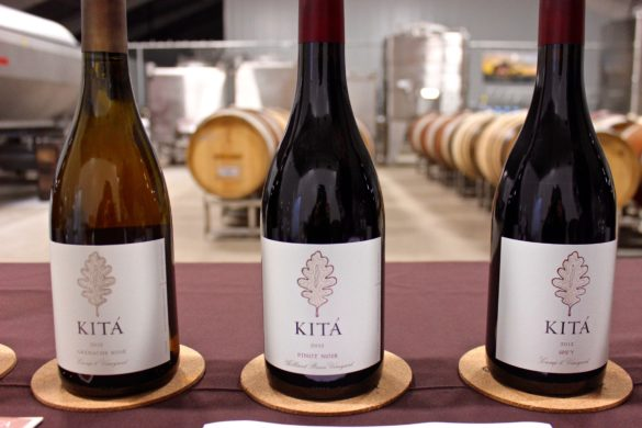 Kita Wines | Wander & Wine