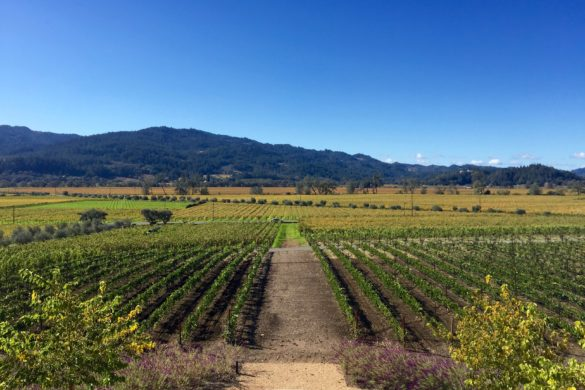 Where to Eat, Drink & Stay in Calistoga | Wander & Wine
